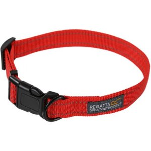 Discover Dog Collars, Harnesses & Leads ideas