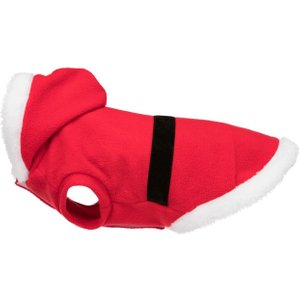 Discover Dog Clothing & Accessories ideas