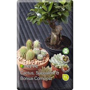 Discover Cacti & Succulent Compost ideas