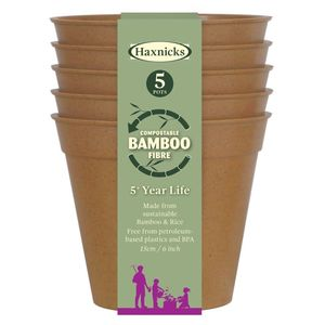 Discover Bamboo Plant Pots ideas
