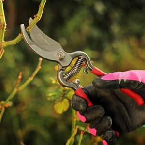 Kent & Stowe Traditional Bypass Secateurs 77903 Plants & Seeds