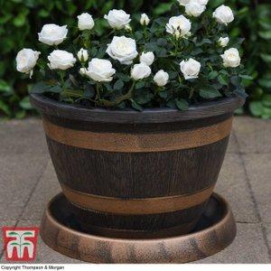T&m Wooden Barrel Effect Pot & Saucer