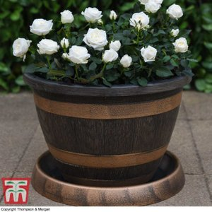 Wooden Barrel Effect Pot & Saucer Kb0556 Plants & Seeds