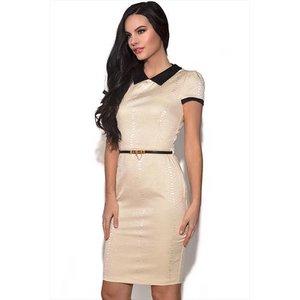 Paper Dolls Collar Detail Snakeskin Dress Vestry Online 4007