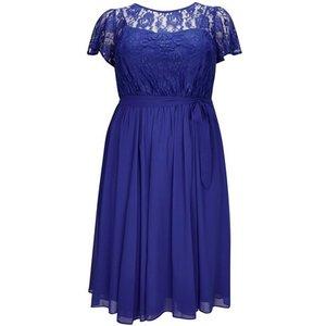**scarlett & Jo Blue Lace Dress, Royal Blue 552018000432144 Ev70a26yble, Royal Blue