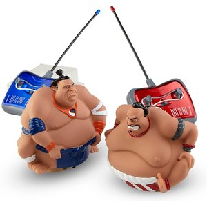 Sumo Smackdown Remote Control Wrestlers Fighting Game