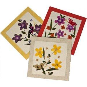 Fair To Trade Pressed Flower Card - Butterflies