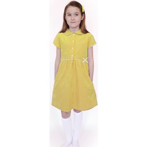 Ecooutfitters Organic Cotton Yellow Gingham Summer Dress - 3yrs Plus 455636