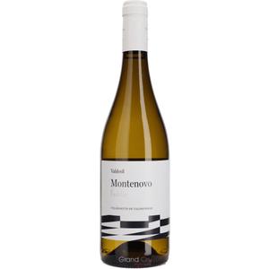 Bodega Valdesil Valdesil Montenovo Godello 2019 Wine