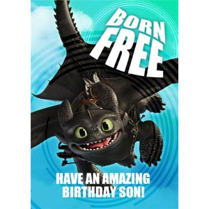 Born Free - How To Train Your Dragon Birthday Card , Standard Size By Moonpig Htd005 St