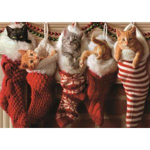 Cute Cats In Santa Stockings Christmas Card, Giant Size By Moonpig Ava012