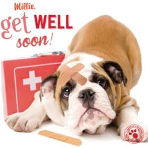 Personalised Get Well Soon Card, Large Square Card Size By Moonpig Stup048 Lg