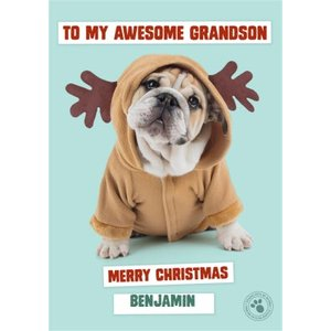 Studio Pets To My Awesome Grandson Merry Christmas, Large Size By Moonpig Stup095 Lg