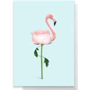Jonas Loose Flamingo Flower Greeting Greetings Card - Large Card  Rc 26574 D8f3f3 A4