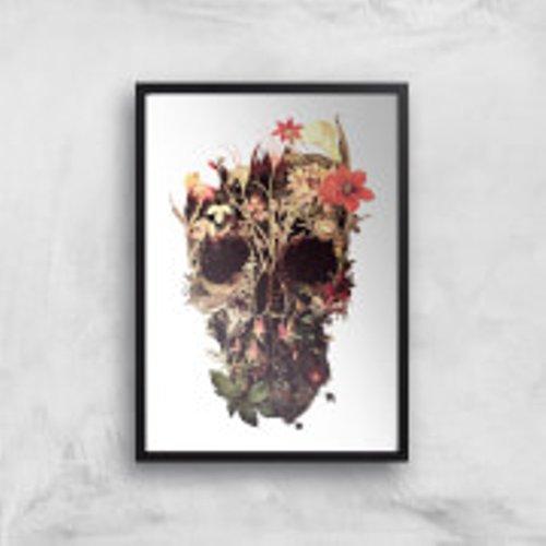 Ikiiki Bloom Skull Giclee Art Print - A3 - Black Frame Multi Pr 36387 Ffffff A3bf, Multi