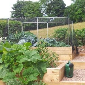 Gardening Naturally Fruit And Vegetable Cages 1.2m High