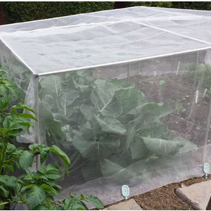 Gardening Naturally Fruit And Vegetable Cages 700mm High