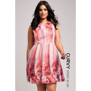 Little Mistress Curvy Pink Floral Fit And Flare Dress Size: 20 Uk, Col Ss15 Cab010 2410
