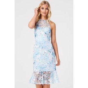 Paper Dolls Britten Blue Floral Lace Peplum Dress Size: 6 Uk, Colour: S9pd0116mu6
