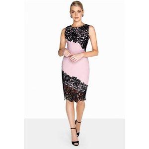 Paper Dolls Contrast Lace Dress Size: 6 Uk, Colour: Mink / Black S8pd0135mi6