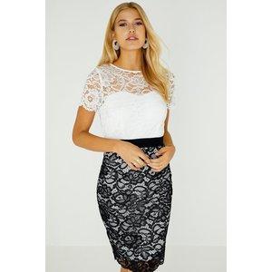 Paper Dolls Covina Contrast Lace Dress Size: 12 Uk, Colour: Black / Wh S9pd0101mo12