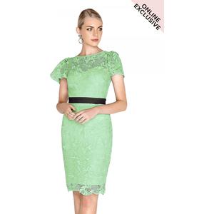 Paper Dolls Lille Contrast Lace Dress Size: 16 Uk, Colour: Sage S8pd0142gr16