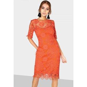 Paper Dolls Orange Lace Dress Size: 16 Uk, Colour: Orange S8pd0128or16