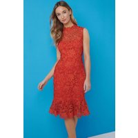 Paper Dolls Orange Peplum Dress  Size: 12 Uk, Colour: Orange S7pd0148or12