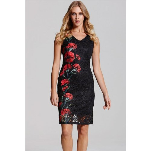 Paper Dolls Red & Black Floral Lace Dress Size: 8 Uk, Colour: Prin Aw15 Pdab063 248