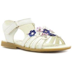 Walkright Girls White Flower Easy Fasten Sandal 29257 Childrens Footwear