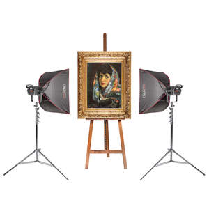 Pixapro Led100d Mkiii Twin Kit, For Photographing Large Paintings