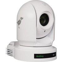Birddog Eyes P200 1080p Full Ndi Ptz Camera W/sony Sensor & Hdmi/3g-sdi (white) Bd P200w