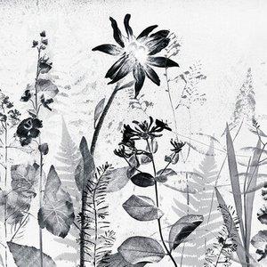 Art For The Home Mural Flower Press 113143 Diy