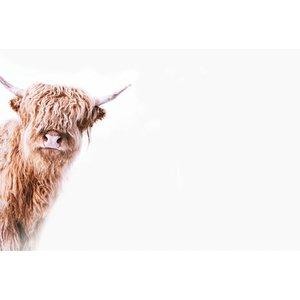 Artist Mural Highland Cattle 2 119825 Diy