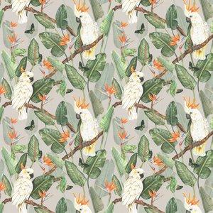 Isabelle Boxall Wallpaper Birds Of Paradise Ib5013 Diy