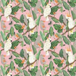Isabelle Boxall Wallpaper Birds Of Paradise Ib5015 Diy