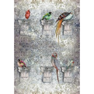 Louise Body Wallpapers Perched Flint, Perched Flint Painting & Decorating
