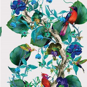 Osborne & Little Wallpaper Rain Forest W7026/01 Diy