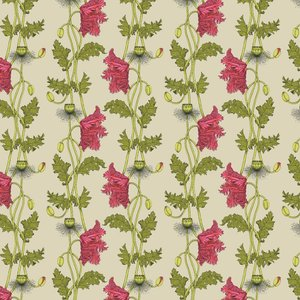 Petronella Hall Wallpaper Poppy Pop-ws Diy