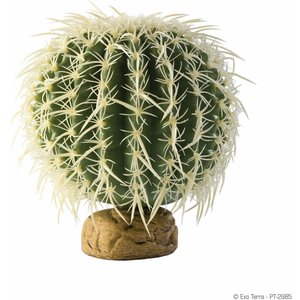 Exo Terra Barrel Cactus Medium Phd030 Pets