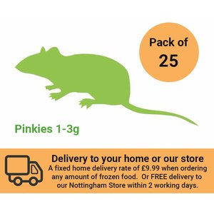 Internet Reptile Frozen Mice Pinkies (1g+) Pack Of 25 Zm01025 Pets