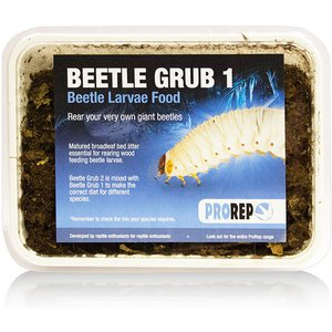 Prorep Beetle Grub (type A) Fpb005 Pets