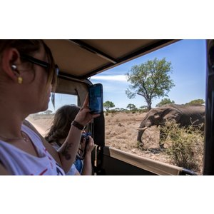 G Adventures Tailormade Southern Africa: Cape Town, Kruger & Zimbabwe 25117 Holidays